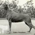 EDDA V. FERROLHEIM