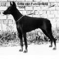 CITTA V. FURSTENFELD