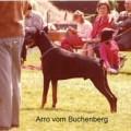 ARRO V. BUCHENBERG