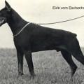 EICK V. ESCHENHOF