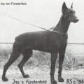 INA V. FURSTENFELD