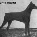 LUZ V. RODELTAL