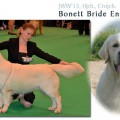 BONETT BRIDE ENERGY SOURCE