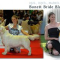 BONETT BRIDE BLUE MOON