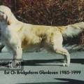 BRIDGEFARM GLENLEVEN