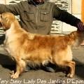 VERY SEXY LADY DES JARDINS D'EPONA