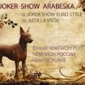 JOKER SHOW ARABESKA