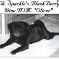 SPARKLE'S BLACKBERRY WINE