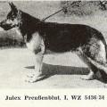 JULEX PREUENBLUT