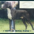 VITTO DE ROYAL TOPAZ