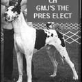 GMJ'S THE PRES ELECT
