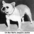 BER-NEIL'S JEEPERS JACKIE