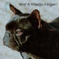 WOLFN' WRINKLE'S J EDGAR