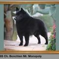 BONCHIEN MR MONOPOLY