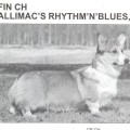 ALLIMAC'S RHYTM'N'BLUES