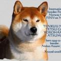 TENKUU NO TETSU GO YOKOHAMA ATSUMI