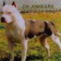 KIMMAR'S CATT MAN ROO