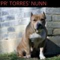 'PR' TORRES' NUNN