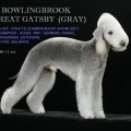 BOWLINGBROOK GREAT GATSBY